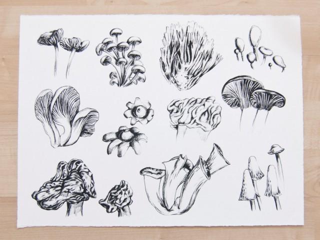 Fungi print - Leah Goren