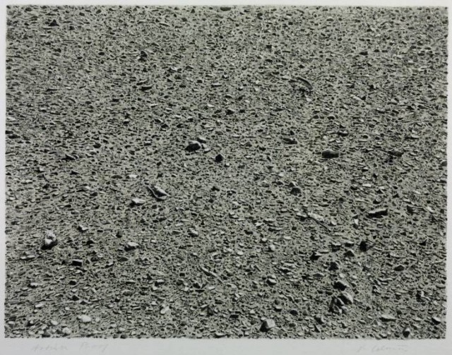 Desert by Vija Celmins