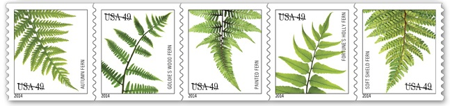 USPS ferns stamps