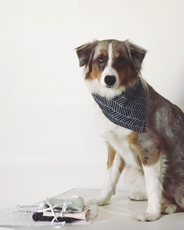 Joni with a bandana
